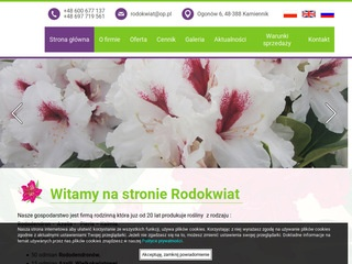 Rodokwiat - Rododendron producent