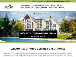 Beltine Forest Hotel - hotel czechy